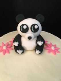 panda-bear-close-up