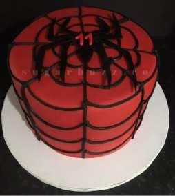 2 web spiderweb w