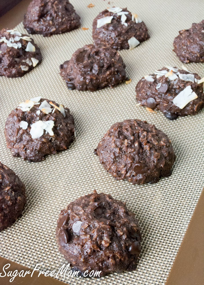 flourless chocolate coconut cookies1 (1 of 1)