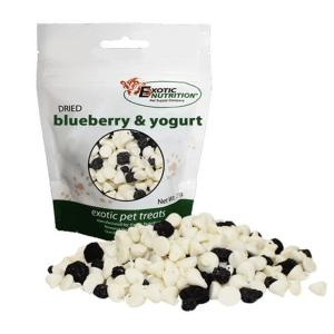 snack yogurt arandano para petauros blueberry snack for sugar glider yogurt drops sugar glider europe (1)