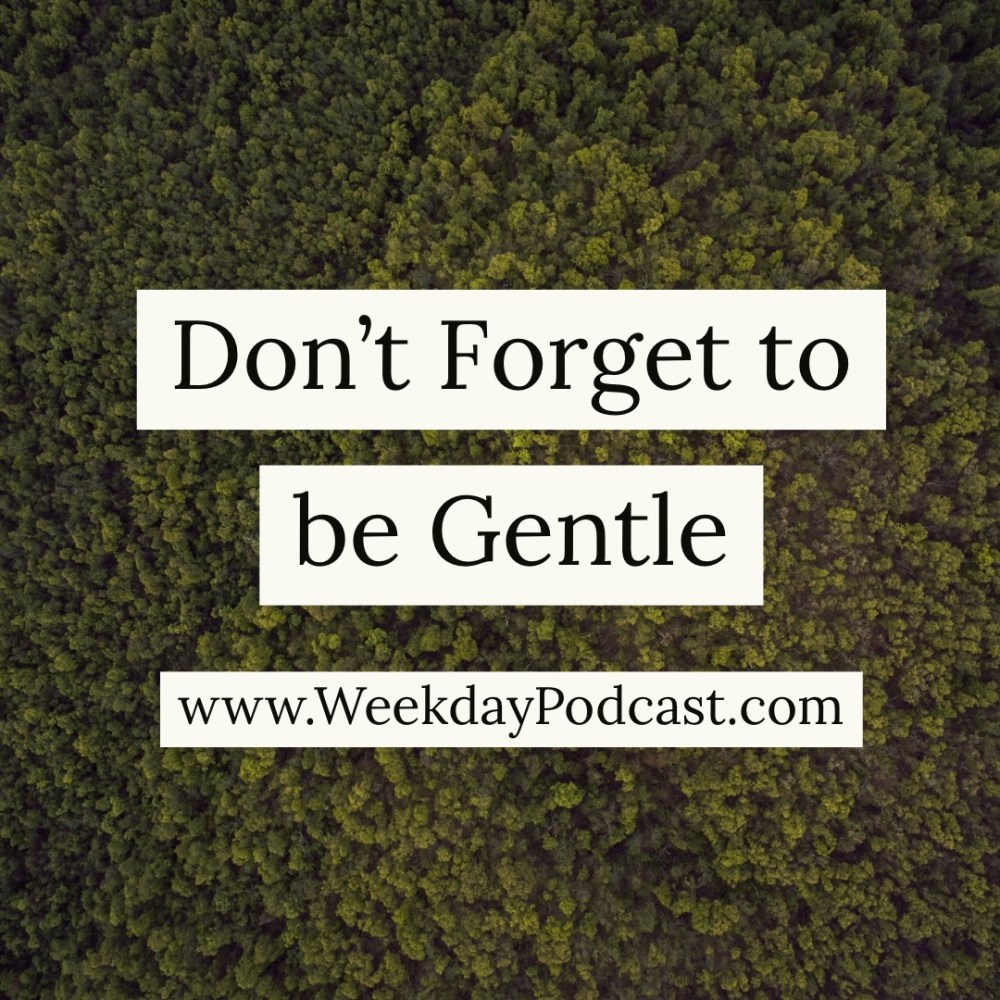 Don\'t Forget to Be Gentle Image