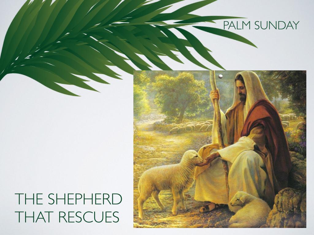 Palm Sunday.003