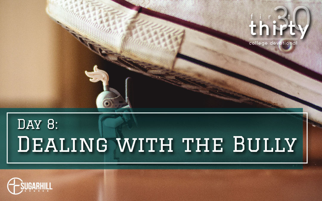 Day 8 – Dealing with the Bully