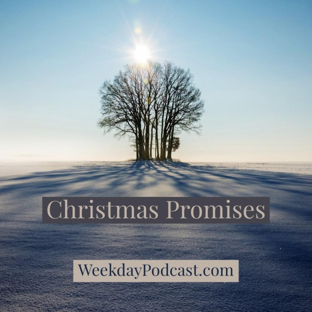 Christmas Promises Image