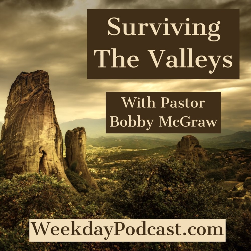 Surviving The Valleys Image