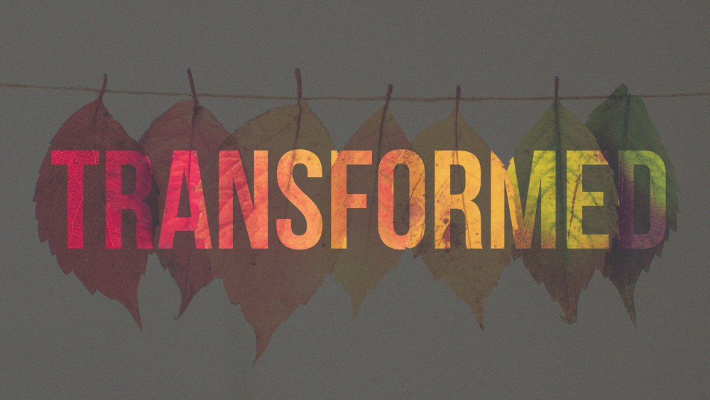 Transformed: Week 4 Image