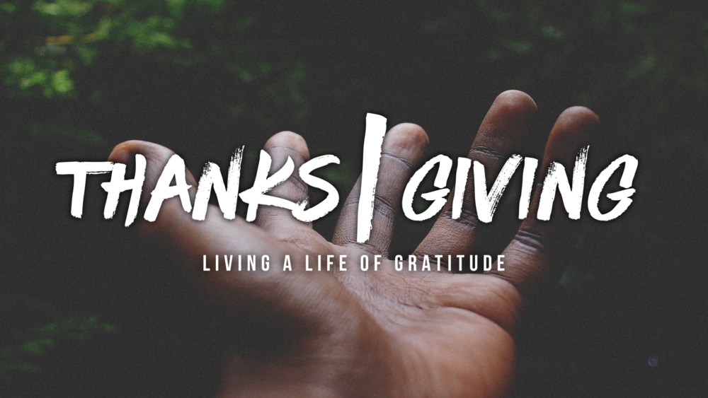 Thanks|Giving: Week 4 Image