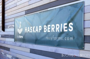 Haskap Berry Hand Pies & A Haskap Farm Table
