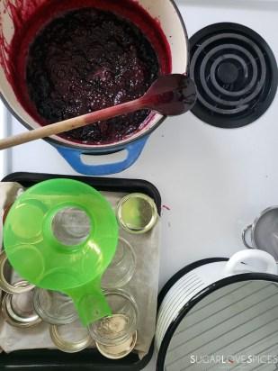 Italian Crostata with Homemade Haskap Jam