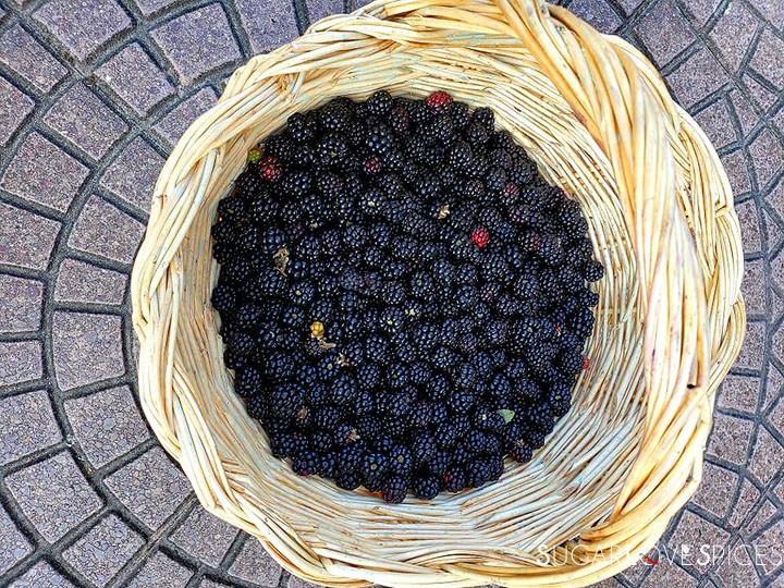Blackberry Ricotta Sbriciolata-blackberries in basket
