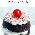 Fudgy Brownie Black Forest Mini Cakes-one-closeup
