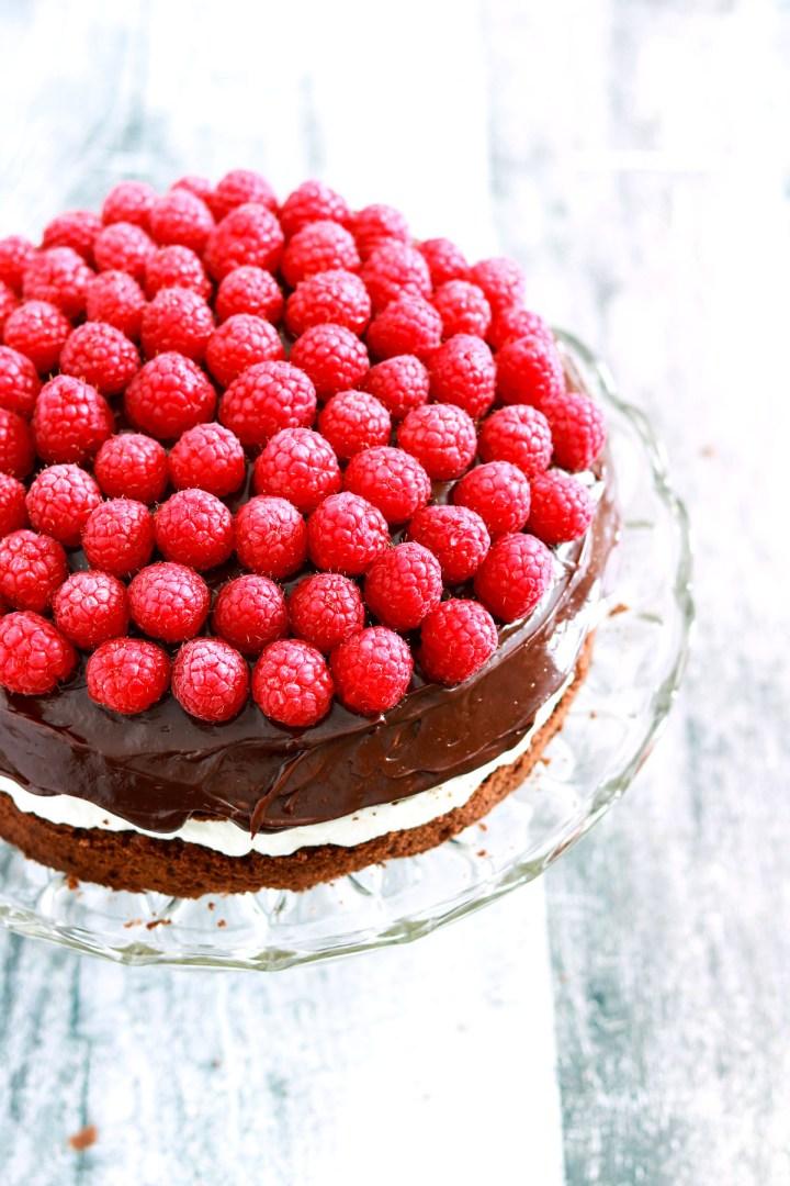 Double Chocolate Italian Cream Birthday Cake-cake-side view
