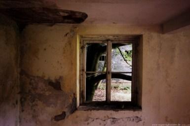 Das verlassene Dorf Oertelsbruch 23 - Sugar Ray Banister