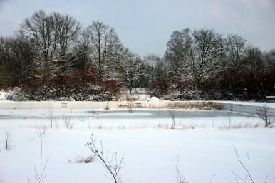 Freibad Langwasser 05 - Sugar Ray Banister