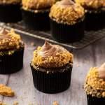Chocolate Cheesecake Cupcakes by Sugar Salt Magic