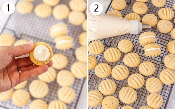 cookies spread out on a tray while being filled with buttercream