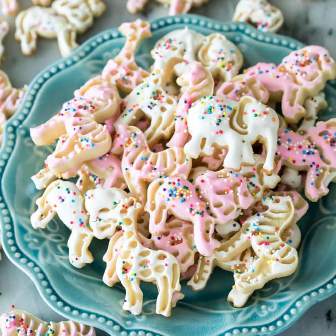 Frosted animal cookies on blue plate