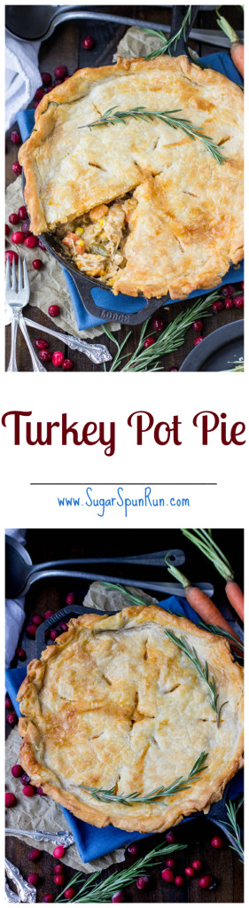 Turkey Pot Pie, great for using up leftover turkey from Thanksgiving