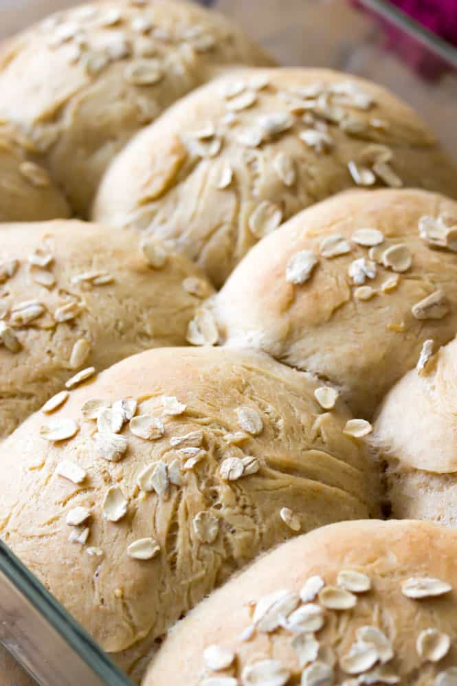 Honey Wheat Rolls out of the oven