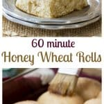 Sixty Minute Honey Wheat Rolls