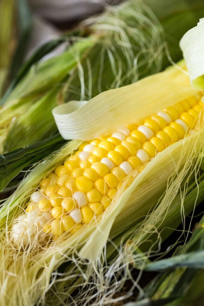 Fresh summer corn used for making corn salad