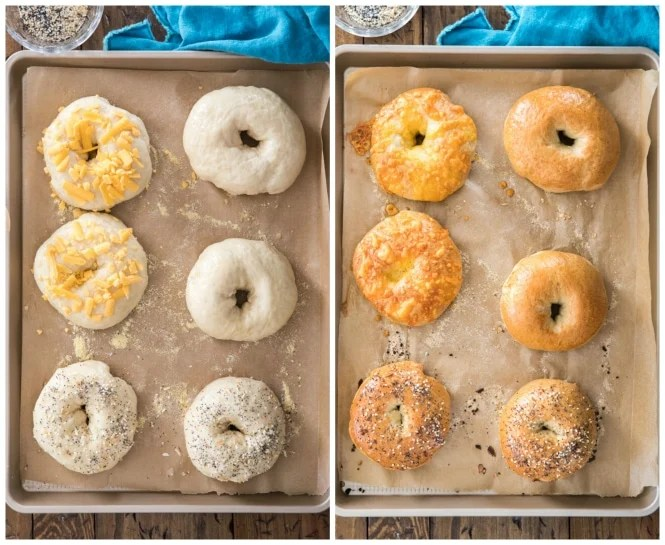 Bagels before and after baking in the oven
