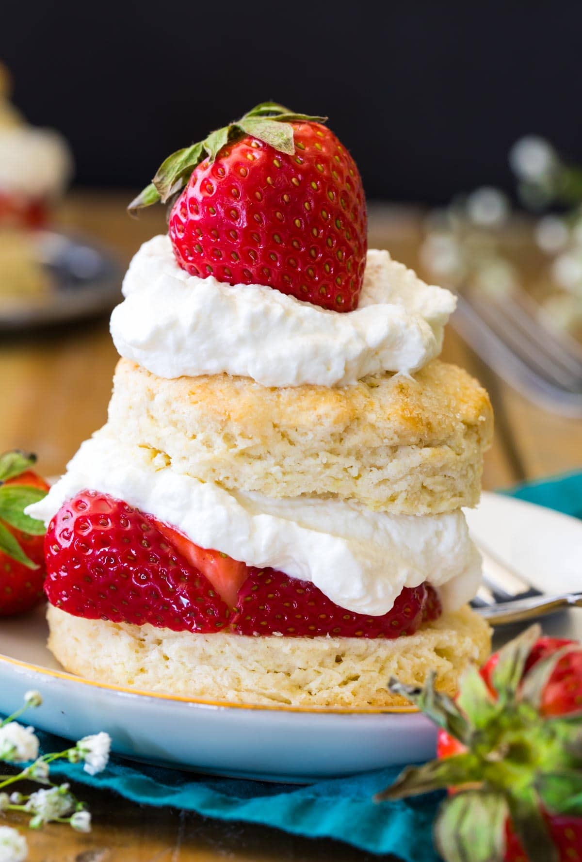strawberry shortcake on white plate with black background