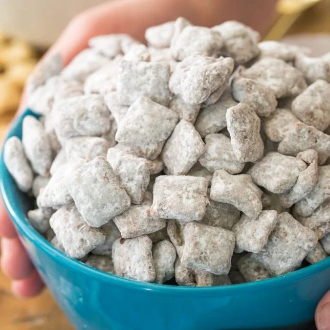 puppy chow in blue bowl