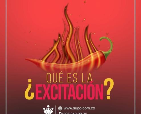 la excitación La Excitación la excitacion 1 especialistas médicos SUGO| Md. Esp. Sexología Urología Ginecología y Obstetricia la excitacion 1
