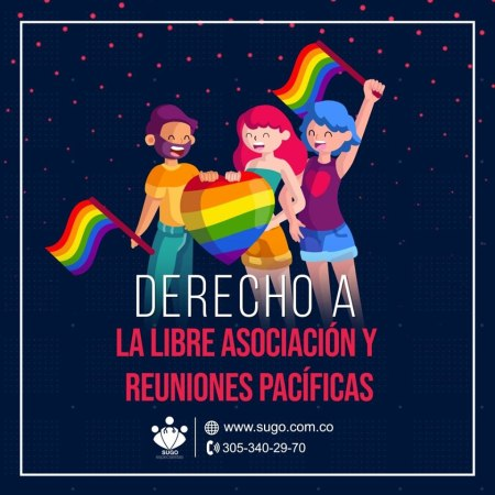 [object object] Derechos Sexuales derevho 7 300x300