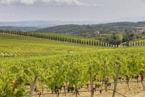 Best of Tuscany - itinerary