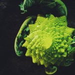 Romanesco on Suitcase Foodist
