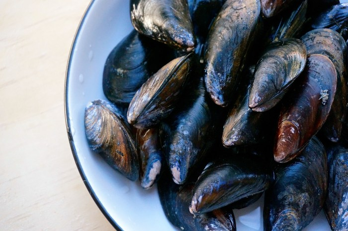 Hatch Chile Mussels | Suitcase Foodist
