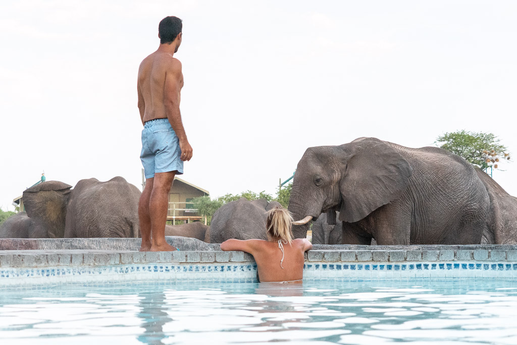 6 unique things to do in Botswana