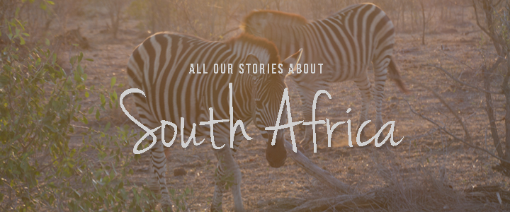 All Storie about Africa