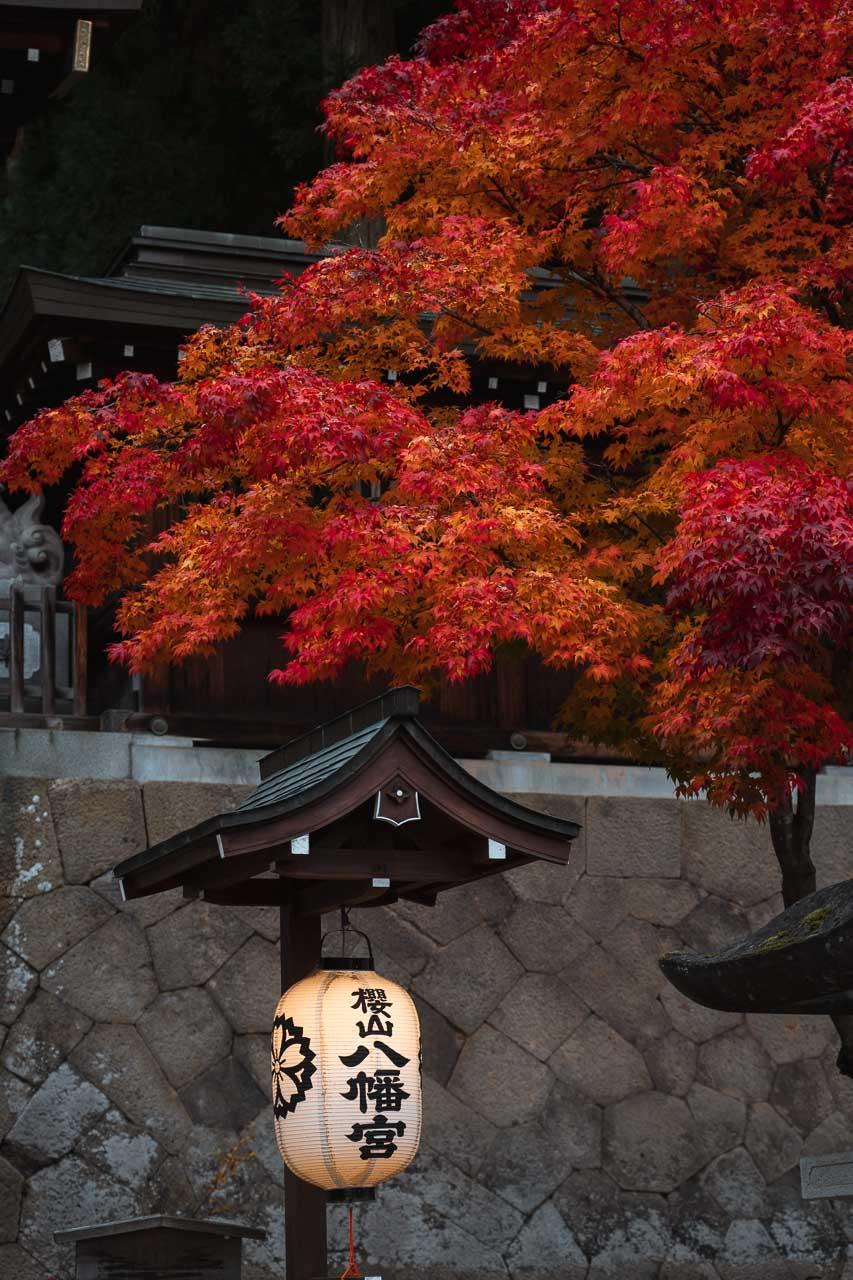 Takayama during autumn