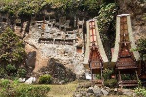 Lemo Stone Grave, Tana Toraja Tour