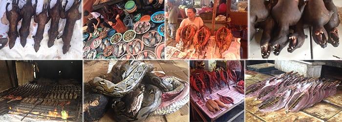 Minahasa Tour visiting Tomohon Market