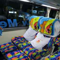 Interior Bus to Toraja Land
