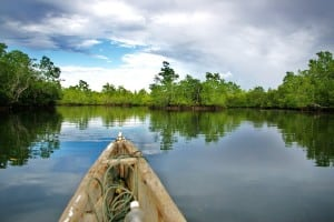 Mangroove Canoe Trip at Tumbak Bay