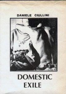 Domestic Exile - 1983 di Daniele Ciullini copertina tape