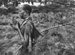 Sebastião Salgado Genesi cacciatore con otarda dal ventro nero Botswana