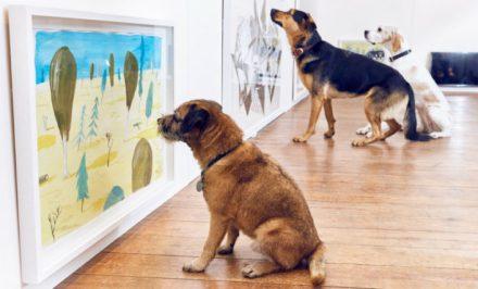 animali-al-museo