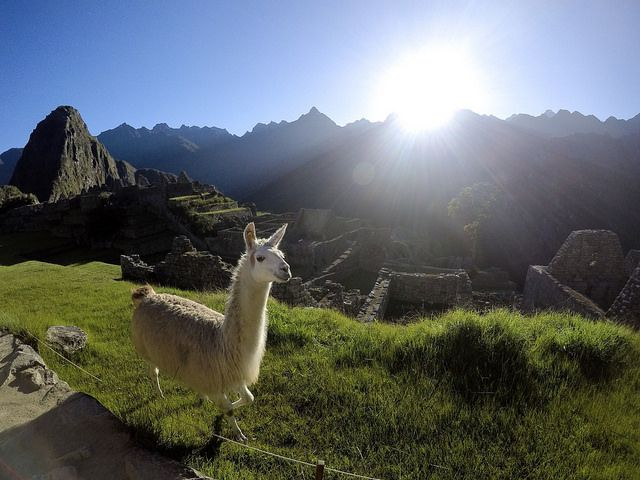 Machu Picchu Trek and Bike Tour