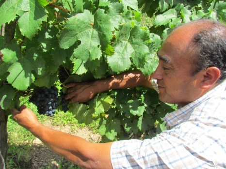 During an organic wine tour with a member of the rural community near Cafayate in Salta