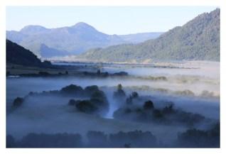 Lonquimay landscape