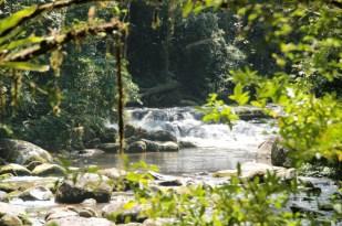 Trekking excursion near Paraty in Brazil