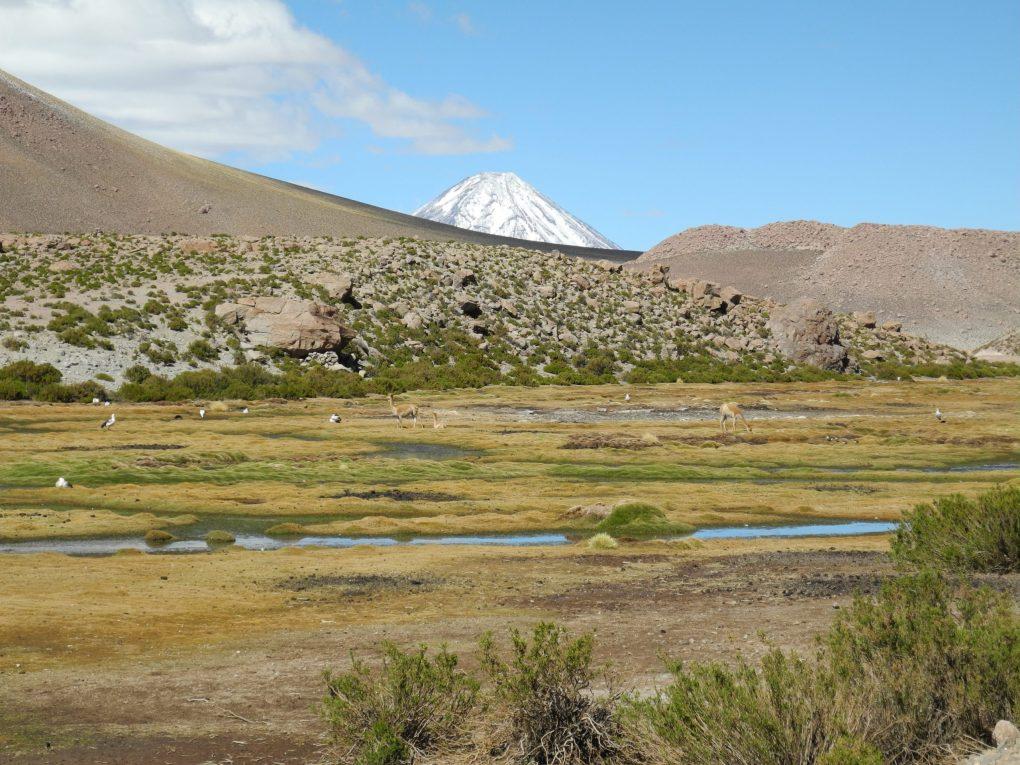Landscape in the Atacama Desert, on the way to the Tatio Geyser