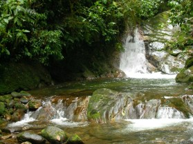 Swimming during the Lost City Hike - Colombia