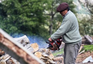 The Mapuche in the area have traditionally sold firewood